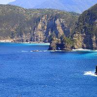 甑島の青い海で魚たちと戯れる☆ダイビング&お料理堪能プラン♪