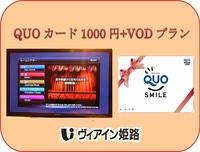 QUOカード1,000+映画見放題付きプラン
