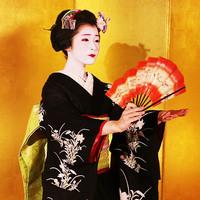 【舞妓ショー鑑賞チケット付】火・金曜日限定!舞妓さんに会って話せる特別な夜★朝食付