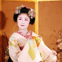 【舞妓ショー鑑賞付】モデレートツイン(禁煙)