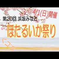 くコ:彡 3/31(土)・4/1(日)限定!春を感じる**浜坂みなと『ほたるいか祭り』プラン+゜〜