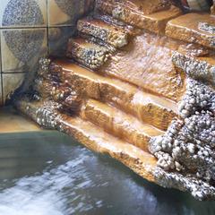 【美味旬旅】【平日限定/特典付】加温加水一切無しの源泉かけ流し湯と料理を堪能【くしろを体感!】