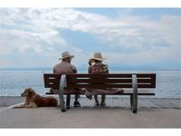 【愛犬と伊豆高原で♪】お部屋で愛犬とのんびりステイ<食事はお部屋で♪>