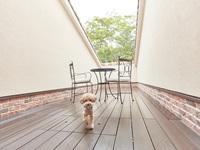 ツイン(バルコニー付き)…客室30平米+バルコニー25平米