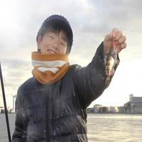 【釣り人歓迎】◆2室限定!釣りセットレンタル付プラン◆すさみ港でのフィッシングに最適★