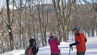 【とびっきりの八幡平プラン】冬の原生林で大自然を満喫【スノーシュー散歩付プラン】