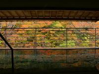 【冬到来!(^^♪1泊2食】◇ミニ会席&バイキング+90分飲み放題付 =渓流沿い露天風呂=