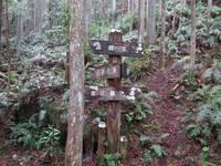 熊野古道を歩く一人旅の方へのシングルプラン♪【素泊まり】旅の疲れを源泉かけ流しの湯で癒してください♪