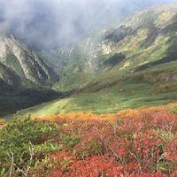 【谷川岳ロープウェイチケット付き】日本百名山!ロープウェイから四季を愉しむ大自然満喫プラン