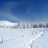 【1泊2食/高級ワイン付】 〜冬〜 静寂の季節。ゆったりとした大人の休日。冬の高級ワイン付プラン