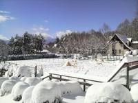 【冬得】八ヶ岳ブルーと名峰の美しい景色が魅力の冬の八ヶ岳STAY ご夕食「極上グルメディナー」