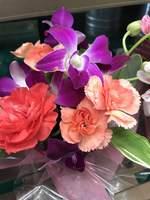 【記念日プラン】大切な記念日のお祝いをお手伝い ケーキとお花にメッセージを添えて お部屋食