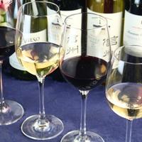 【プレミアム】☆当館おすすめ☆グレードアップコース+シニアソムリエが選ぶグラスワイン4種《1泊2食》