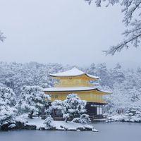 【クリスマスプラン◆素泊り】大切な人と過ごす京都のクリスマス♪<イルミネーションマップ付き>