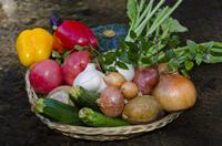 【eco連泊&朝食付き】地産素材を活かした自然美食ビュッフェ 開運&日光パワースポット巡りの旅