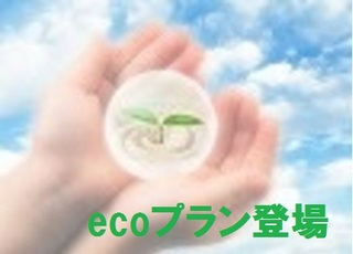 3泊〜限定★ecoプラン〜清掃なし・タオルのみ交換〜