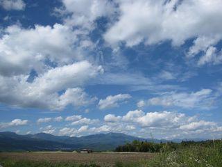 【カップル】初夏といえば軽井沢だぁ♪≪5〜7月≫涼しい北軽井沢の旅♪ペットと一緒 カップルプラン♪
