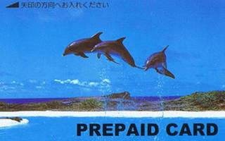 【ポイント10倍】ビジネスマン応援☆ペイTVカード付きプラン☆