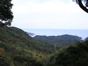 【シンプル素泊まりプラン!】自然を満喫★森の中の和風キャビン☆憩い亭♪