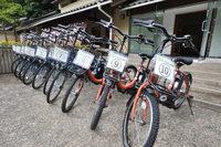 春は桜♪お花見プラン♪特典:電動自転車無料貸出!ログハウス桜の木の下でBBQ!朝食・BBQ付きプラン