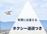 【1日1組限定】両津港まで送迎&プチ観光のタクシー付き!必ず朱鷺に逢わせます♪【朝食付き】
