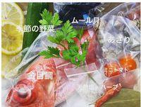 【金目鯛アクアパッツァ付き(4〜6名分)】オーシャンビューのコンドミニアム