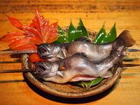 【シェフイチオシ】飛騨牛も山菜鍋も採れたて岩魚も人気の創作料理も!飛騨御嶽をまるごと味わうプラン