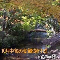 □グループ旅でおトク□ゆふいん秋旅プラン2017