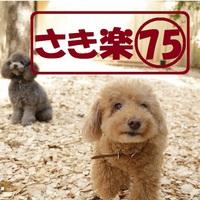 """【さき楽75/1泊2食】早めの予約で""""ポイント10倍""""!楽天限定/本格懐石"""
