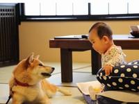 【ファミリー】ペットと赤ちゃん同室OK!ミキハウス認定ペットと泊まれるウェルカムベビールーム
