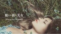 【GOTOヘッドスパ2名付き】高級京町家スティ+眠れる森の美女で最高の癒し