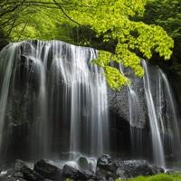 涼風の会津へ♪温泉と料理を満喫☆ゆったり寛ぎプラン【ふくしまプライド。】