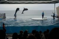 【ホテルから車で7分】上越市立水族博物館「うみがたり」チケット付プラン♪