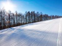 平日限定!お手軽レンタルでスノースポーツを楽しもう♪学生パック(朝食付)