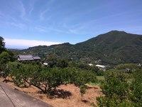 熊野古道歩きに最適♪山あいの古民家ゲストハウス素泊まりプラン