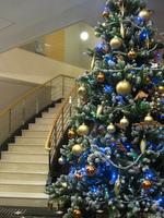 【12/21〜25限定】ワンちゃんと一緒にクリスマスプラン【二食付き】