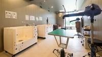 【神奈川県民限定!】酸素カプセル&トリミングルームが50%OFF!近場で遊んでリフレッシュ♪