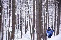 【冬季限定】スノーシュー体験ツアー+宿泊プラン