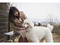 【素泊まり】☆チェックイン20時までOK☆ 愛犬と一緒に伊豆高原の大自然を楽しもう♪