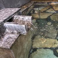 <日帰り>SPECIALランチ&温泉入浴プラン〜ランチと源泉かけ流し美肌の湯を堪能♪
