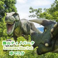 天然温泉【素泊まり(食事なし)プラン】WIFI完備〇恐竜博物館まで5分