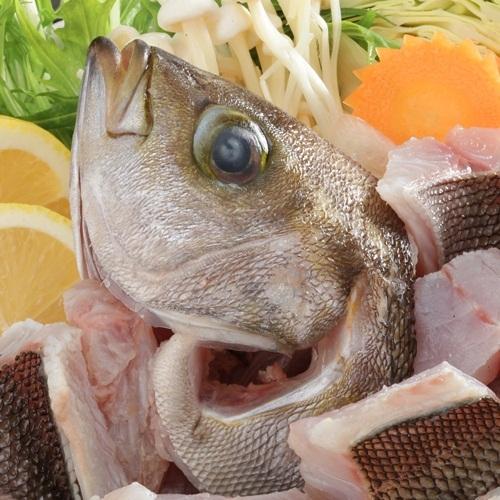 【やまぐち幕末ISHIN祭】天然鮮魚の幸盛りお頭付き☆維新の地をめぐる旅プラン