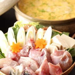 【活き〆とらふぐ×白子焼き付】〜一味も二味も違うこだわり自慢のとらふぐ料理をお楽しみ下さい〜