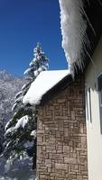 信州の美味しいご飯を食べてから泊りたい!B&Bプラン 冬 白樺高原スキー場徒歩2分!【無料WiFi】