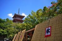 [近畿にお住まいの方限定] 自粛疲れを京都で解消! 8月末迄の1泊特別宿泊プラン(朝食付き)