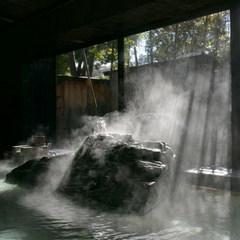 ◆部屋食または個室食確約!◆ 美肌の湯と信州会席を味わうスタンダードプラン