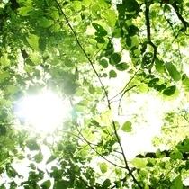 【7泊以上ECOプラン】ウエルカムサービスあり★個別空調★ウォシュレット★WIFI★富士宮駅前