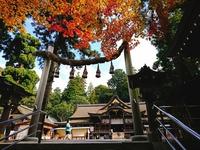 【10-12月限定】NO3密!秋の自然・古代の歴史に触れる旅を応援!☆★レンタサイクル無料プラン☆★
