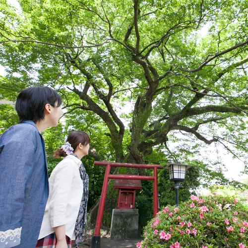 高知城下の天然温泉 三翠園 関連画像 3枚目 楽天トラベル提供
