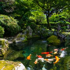 【悩んだ時は、これ!】土佐山海の恵みと天然温泉を愉しむ お食事処プラン【スタンダード】